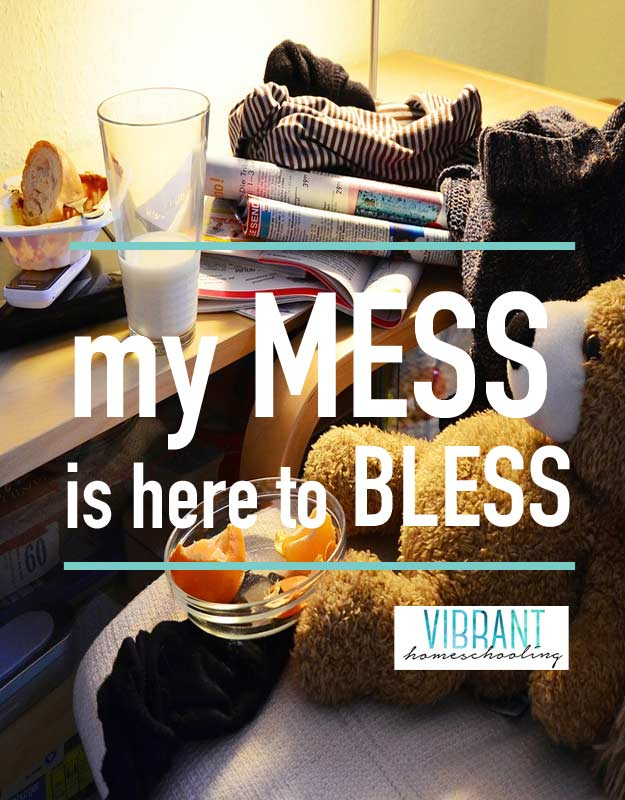 What if my mess is here to bless others? What if my messy house and the bumps in my day can tell others that that I'm not perfect, and that they don't have to be either?