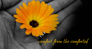 comfort-from-the-comforted--WEB
