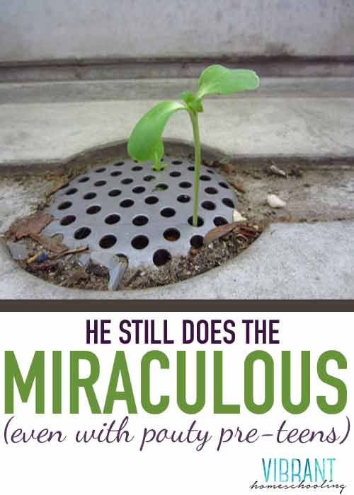 He-Still-Does-the-Miraculous--SOCIAL--WEB