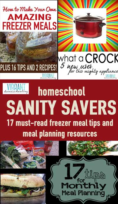 Sanity... who doesn't need more of it when parenting and homeschooling?! Meal planning, freezer meals and monthly shopping are my sanity savers! Here's a list of 17 must-read resources and tips to bring organization to your home! Vibrant Homeschooling