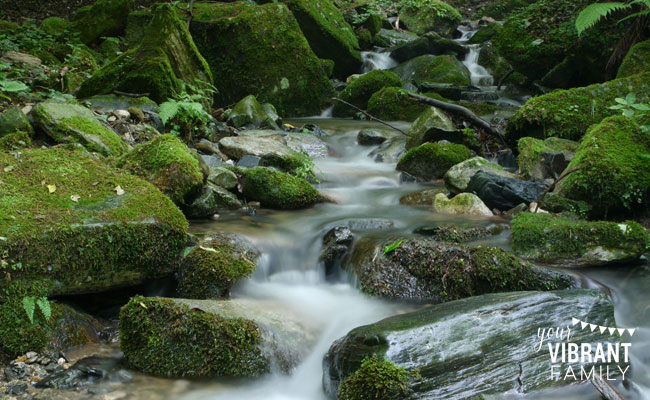 rocks-in-the-path--WEB
