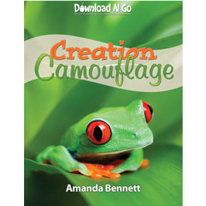 Creation-Camoflauge--WEB