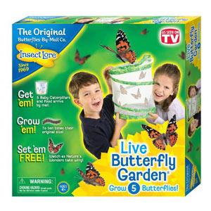 Live-Butterfly-Garden--WEB