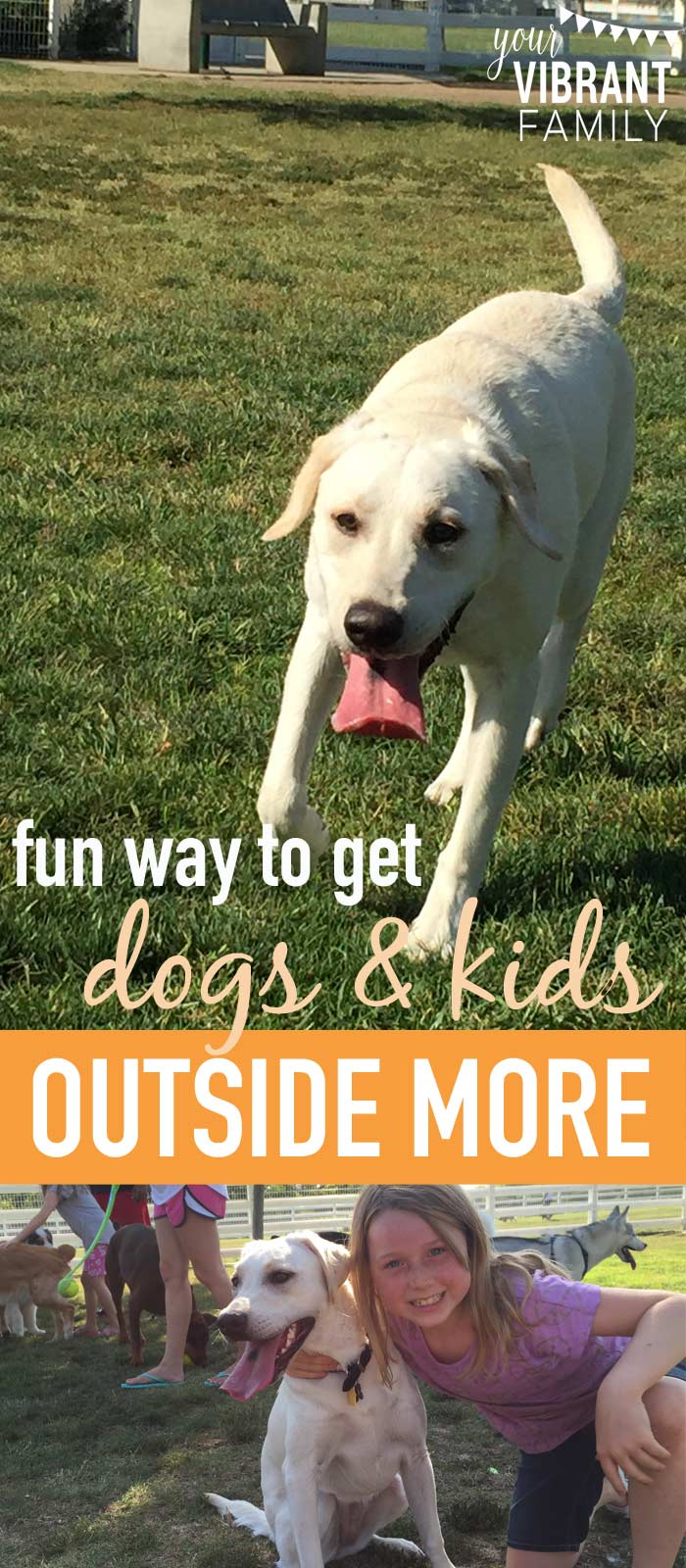 Summertime is great time to get outside and have fun with your kids (yes, even your four-legged ones)! Dogs love the great outdoors and are always up for playtime, right?! We tried this with our family and couldn't believe how much fun we had!