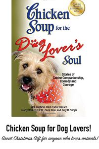 800-x-1200-dog-love-chicken-soup-for-the-soul-book