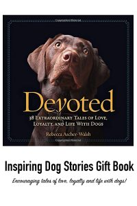 800-x-1200-dog-lovers-gift-book-devoted-dog-stories